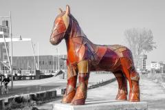 Alkmaar-in-beeld-145-Paard