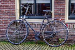 Alkmaar-in-beeld-158