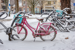 Alkmaar-in-beeld-208-Scharloo