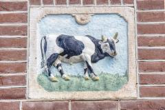 Alkmaar-in-beeld-91