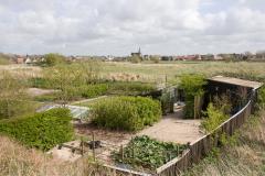 077-Gezicht-op-Egmond-aan-den-Hoef