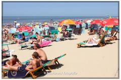 153-Strand